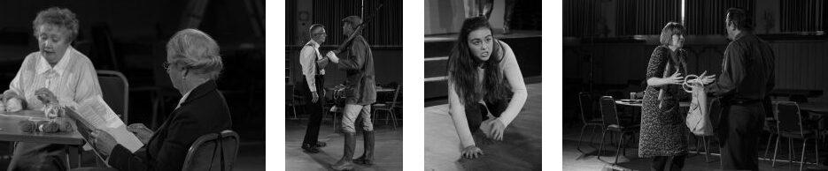 Agatha Crusty and the Village Hall Murders 2016 - a comedy by Derek Webb