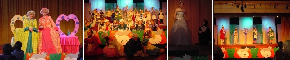 2001 Cinderella - a pantomime by member Peter Webster