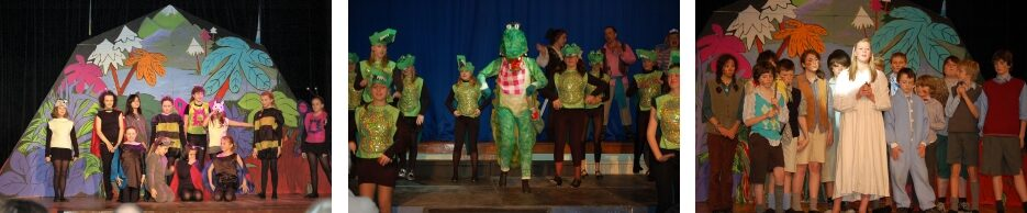 2008 Peter Panto - a pantomime by member Peter Webster