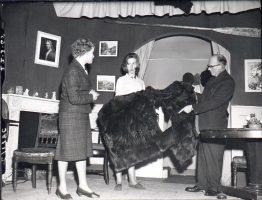 poltergeist-1965-1