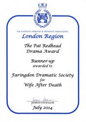 wife-after-death-2013-noda-award