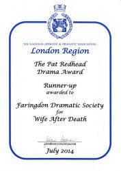 wife-after-death-2013-noda-award