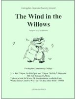 FDS - The Wind in the Willows poster