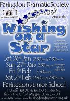 FDS - Wishing on a Star poster